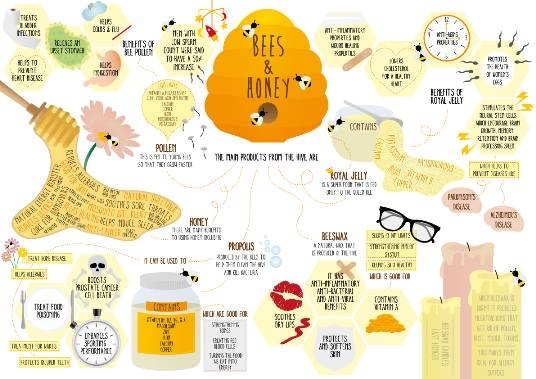 Pure Honey for Sale Manila Philippines - Raw Organic Natural